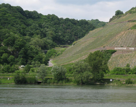 Bacharach Wines - Germany